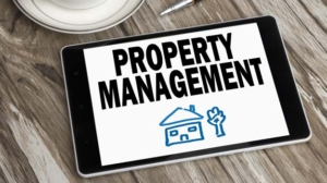 Dynamic Assistant Property Manager