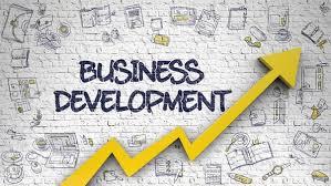 Confident Business Development Executive