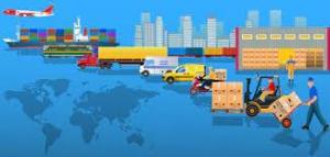 Operations & Logistics Director
